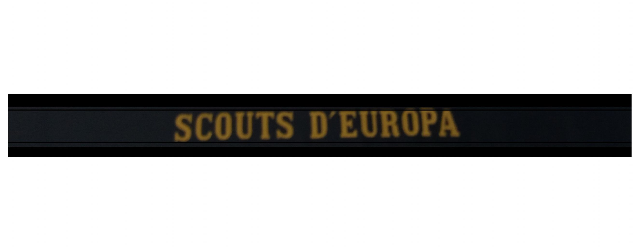 NAUTICAL SCOUTS OF EUROPE